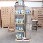 Bulbs packing hall of Abac Netherlands North Holland bv